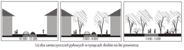Wpływ   obecności drzew w mieście na liczbę zanieczyszczeń pyłowych