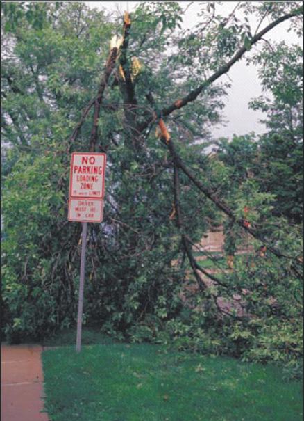 Tabliczki   ostrzegające o zagrożeniu